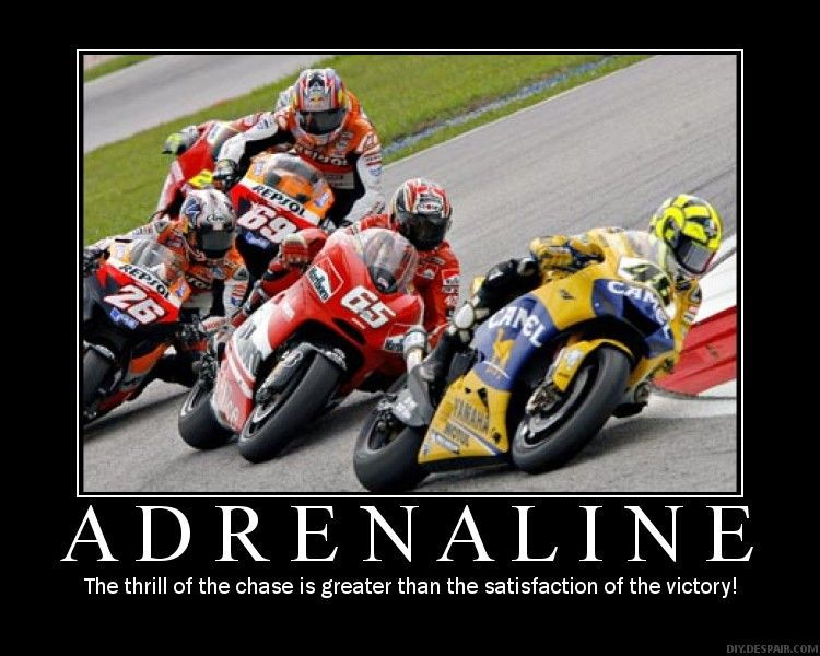 Everyone Needs a Motivational Poster-adrenaline.jpg